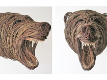 Bärenkopf von Bob Johnston